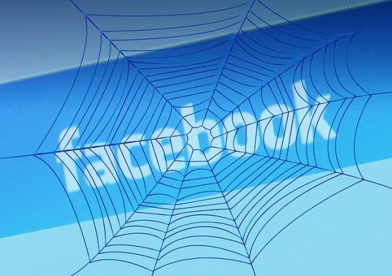 gestao de facebok , facebok para empresas, faebook